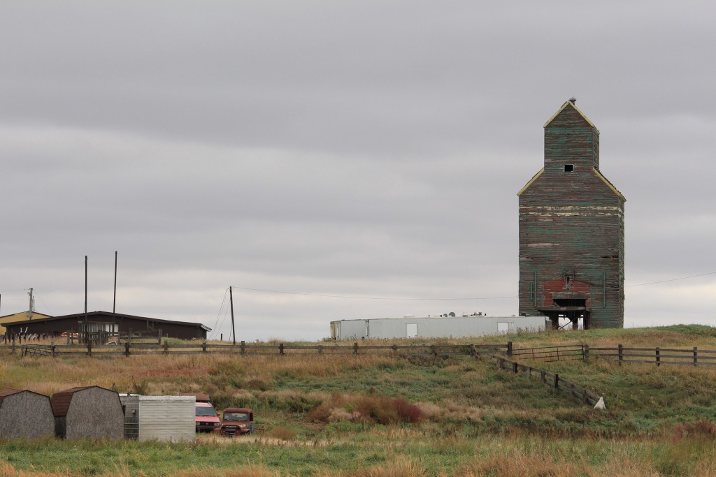 Rural innovation in Alberta